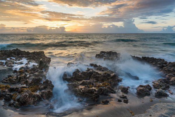Dimitri Sagatov Coral Cove