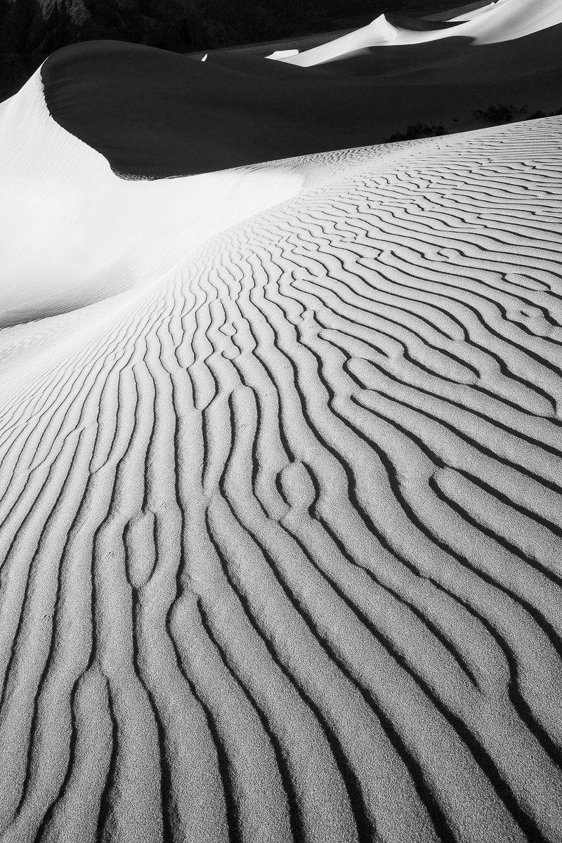 Desert Vertigo